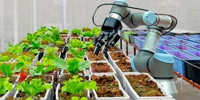 Mendoza destinará 1 millón de dólares para emprendimientos tecnológicos de alto impacto