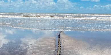 Google anunció que una extensión de su cable submarino Tannat llegó a la Argentina